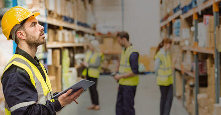 warehouse management - erp software - sap business one